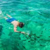 Snorkeling at Phi Phi Islands