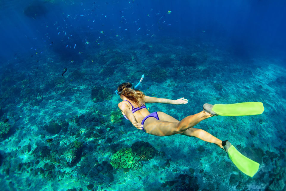 Types of diving: snorkeling